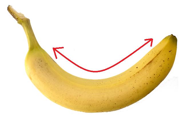 ナイス湾曲!なバナナの画像